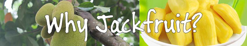 Why Jackfruit